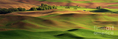 Springtime On The Palouse Poster by Beve Brown-Clark Photography