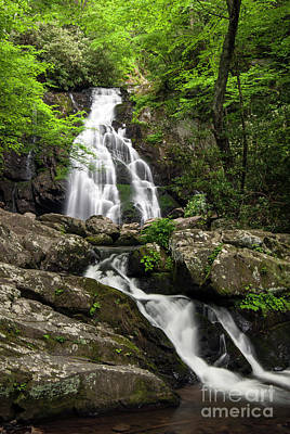 Poster featuring the photograph Spruce Flats Falls - D009919 by Daniel Dempster