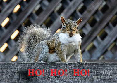 Poster featuring the photograph Squirrel Santa Ho Ho Ho by Susan Wiedmann