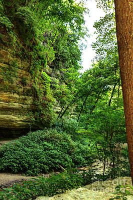 St. Louis Canyon 5 Hdr Poster