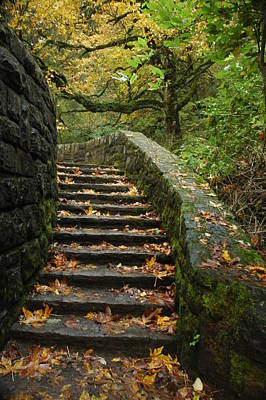 Poster featuring the photograph Stairway To Fall by Lori Mellen-Pagliaro