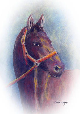 Stallion Poster by Arline Wagner