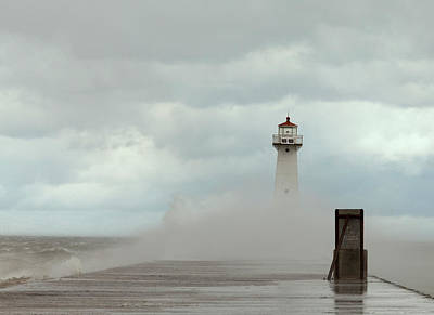 Poster featuring the photograph Standing Tall Against The Storm by Chris Babcock