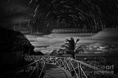 Star Trails Over Tropical Beach Poster by Charline Xia