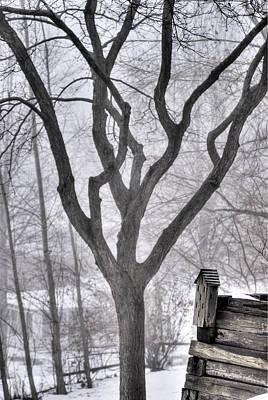 Stark Winter Images Poster