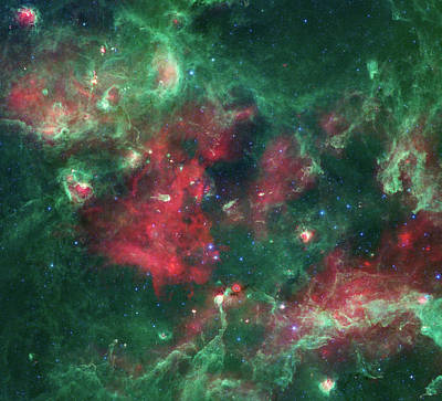 Poster featuring the photograph Stars Brewing In Cygnus X by Nasa