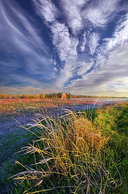 State Of Mind Poster by Phil Koch