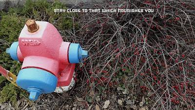 Stay Close To That Which Nourishes You Poster by Kirk Griffith