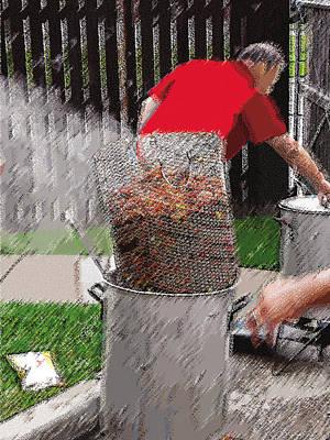 Steaming Mud Bugs For Falvor Poster