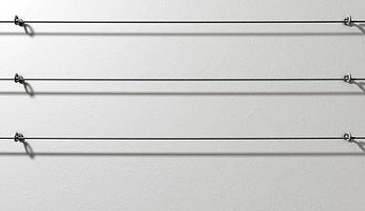Steel Cable Display Wall Poster by Allan Swart