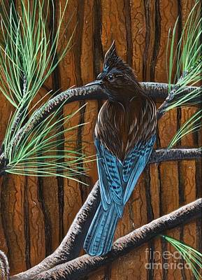Poster featuring the painting Stellar Jay by Jennifer Lake