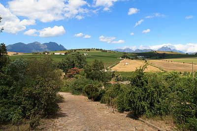 Stellenbosch Hills Poster