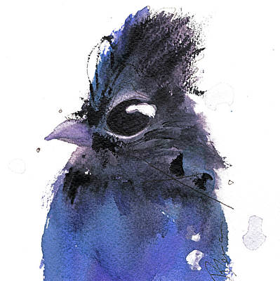 Poster featuring the painting Steller Jay by Dawn Derman