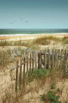 Stick Fences On Dunes Poster by Carlos Caetano