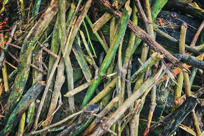 Stick Pile At Retzer Nature Center Poster by Jennifer Rondinelli Reilly - Fine Art Photography