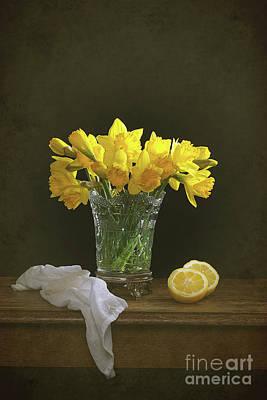 Still Life Daffodils Poster by Amanda Elwell