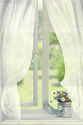 Still Life Overlooking Garden Poster by Amanda Elwell