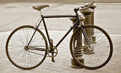 Still Life With Trek Bike In Sepia Poster by Ben and Raisa Gertsberg