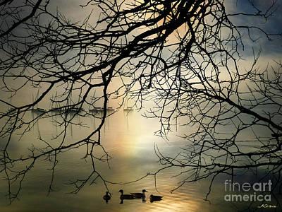 Stille Hjerte Sol Gaar Ned Poster