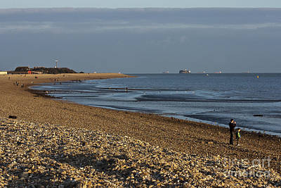 Stokes Bay England Poster by Terri Waters