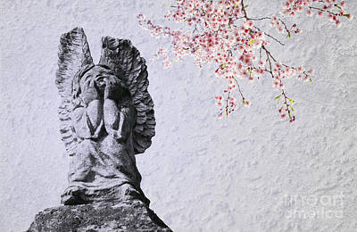 Stone Angel Under Cherry Blossoms Poster by Charline Xia