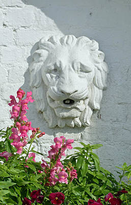 Stone Lion Head With Flowers Poster by Bruce Gourley