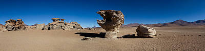 Stone Tree, Eduardo Avaroa Andean Fauna Poster by Panoramic Images