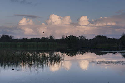 Storm At Sunrise Over The Wetlands Poster