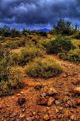 Storm Clouds Over The Sonoran Desert In Spring Poster
