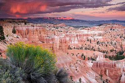 Storm Over Bryce Canyon Poster