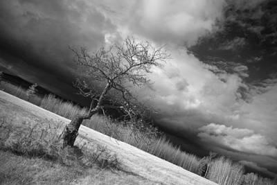 Storm Over Dead River Poster