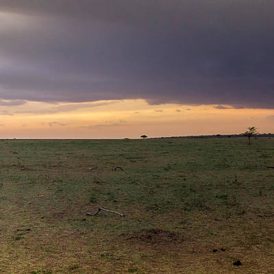 Storm Over The Mara 2 Triptych Poster