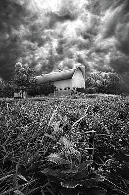 Stormward Bound Poster by Phil Koch