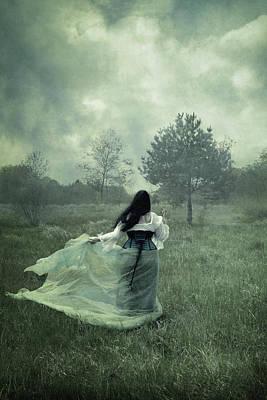 Stormy Fields Poster