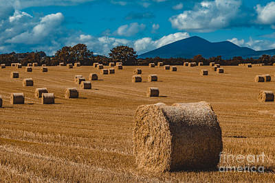 Straw Bale In A Field Poster