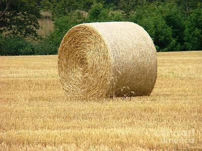 Straw Bale Poster