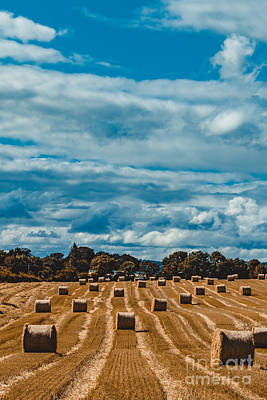 Straw Bales In A Field 2 Poster