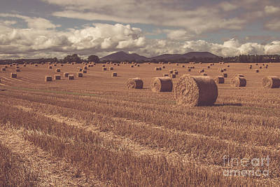 Straw Bales In A Field 4 Poster