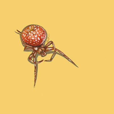 Strawberry Spider Poster by Jude Labuszewski