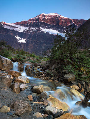 Stream And Mt. Edith Cavell At Sunset Poster by Cale Best
