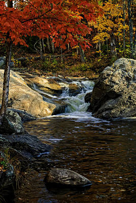 Poster featuring the photograph Stream In Autumn No.17 by Mark Myhaver