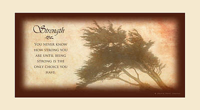 Strength Ivory Border Poster by David Ross