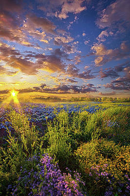 Striving To Be Poster by Phil Koch