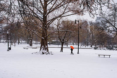 Strolling The Boston Public Garden On A Snowy Morning Boston Ma Poster