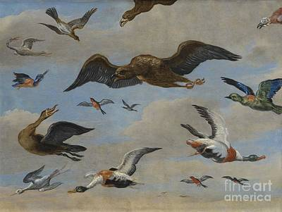 Study Of Birds On A Sky Background Poster by MotionAge Designs