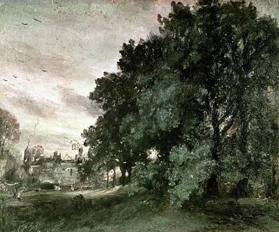 Study Of Trees Poster by John Constable