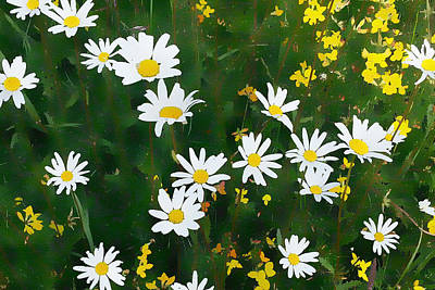 Poster featuring the digital art Summer Daisies by Julian Perry