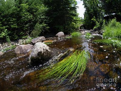 Summer Flow Of Water Near Rangeley Maine  -63322 Poster