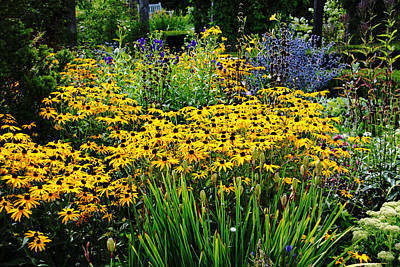 Summer Garden Poster by Debbie Oppermann