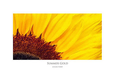 Poster featuring the digital art Summer Gold by Julian Perry
